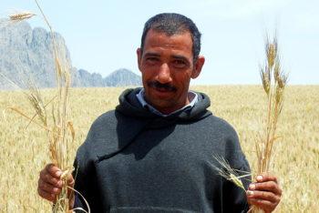 Paysanneries, Souveraineté Alimentaire et Environnement