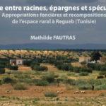 La terre entre racines, épargnes et spéculations. Appropriations foncières et recompositions de l'espace rural à Regueb (Tunisie)