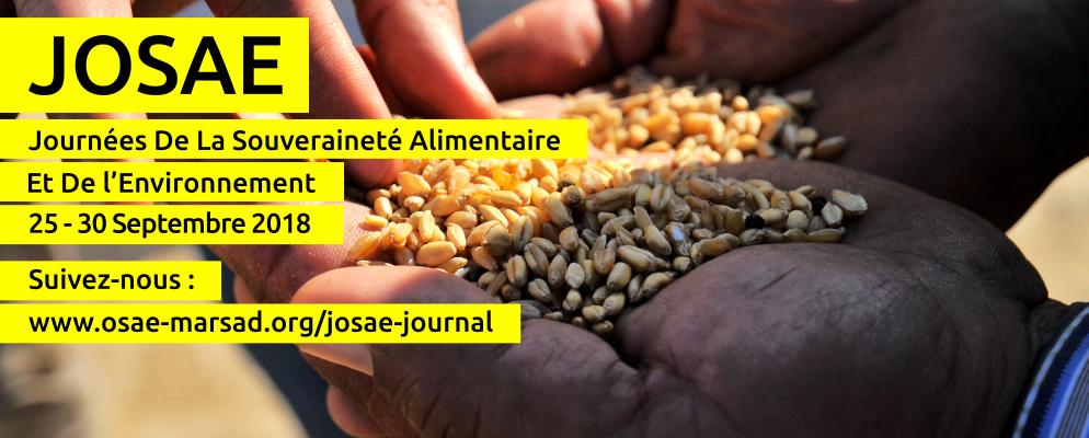 Josae Journal