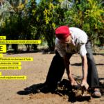JOSAE en images - أيام السيادة الغذائية و البيئة في صور